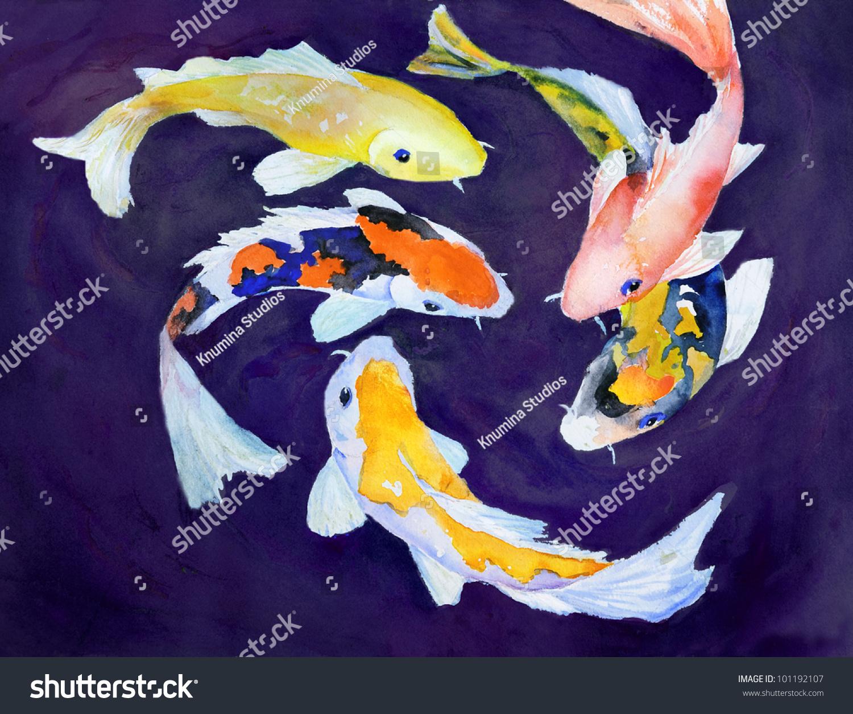 水彩画的彩色锦鲤游泳-动物/野生生物