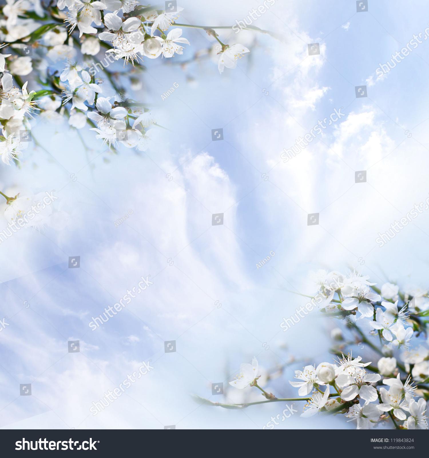 鲜花苹果树-背景/素材,自然-海洛创意(hellorf)-中国