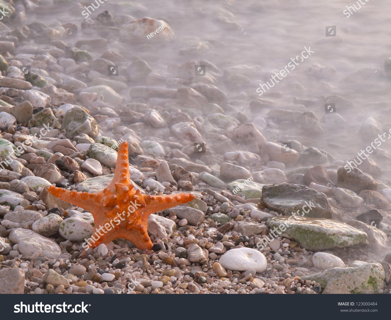 暑假——日落大海沙滩上的海星-背景/素材,自然-海洛
