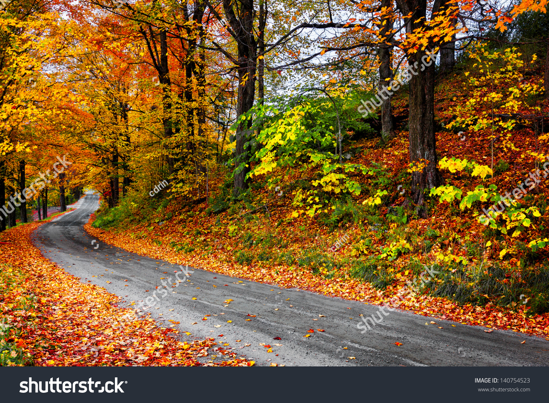秋天的风景用明亮的色彩鲜艳的橙色和红色的树木和的