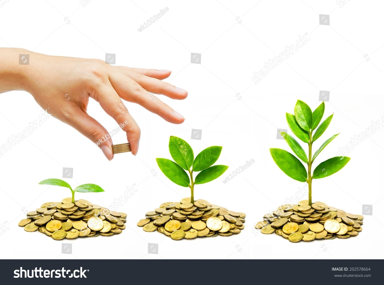 手给金币树生长在成堆的金币——省钱