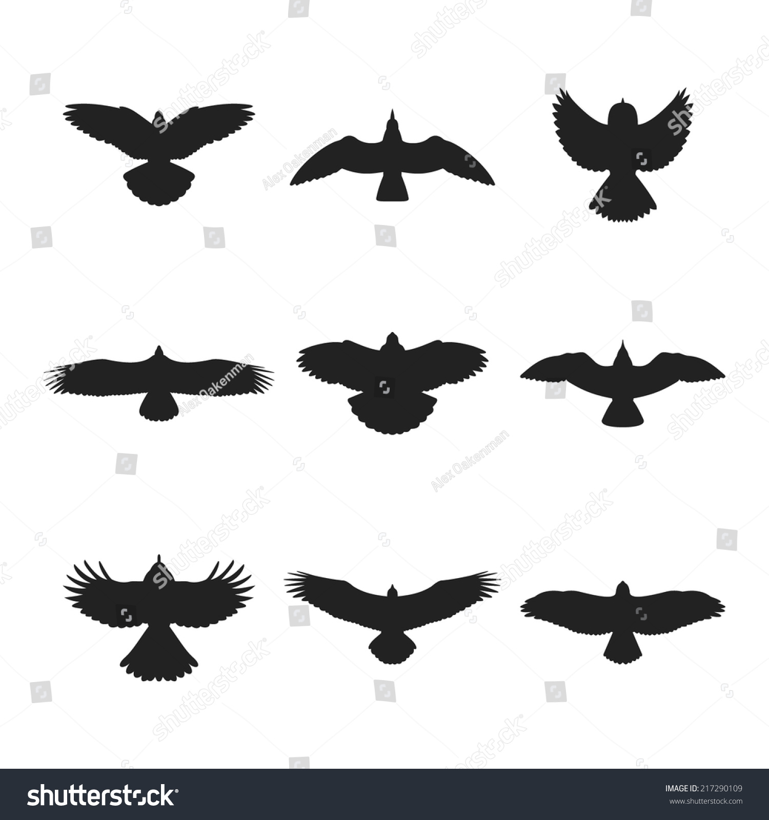 鸽子信封折法图解