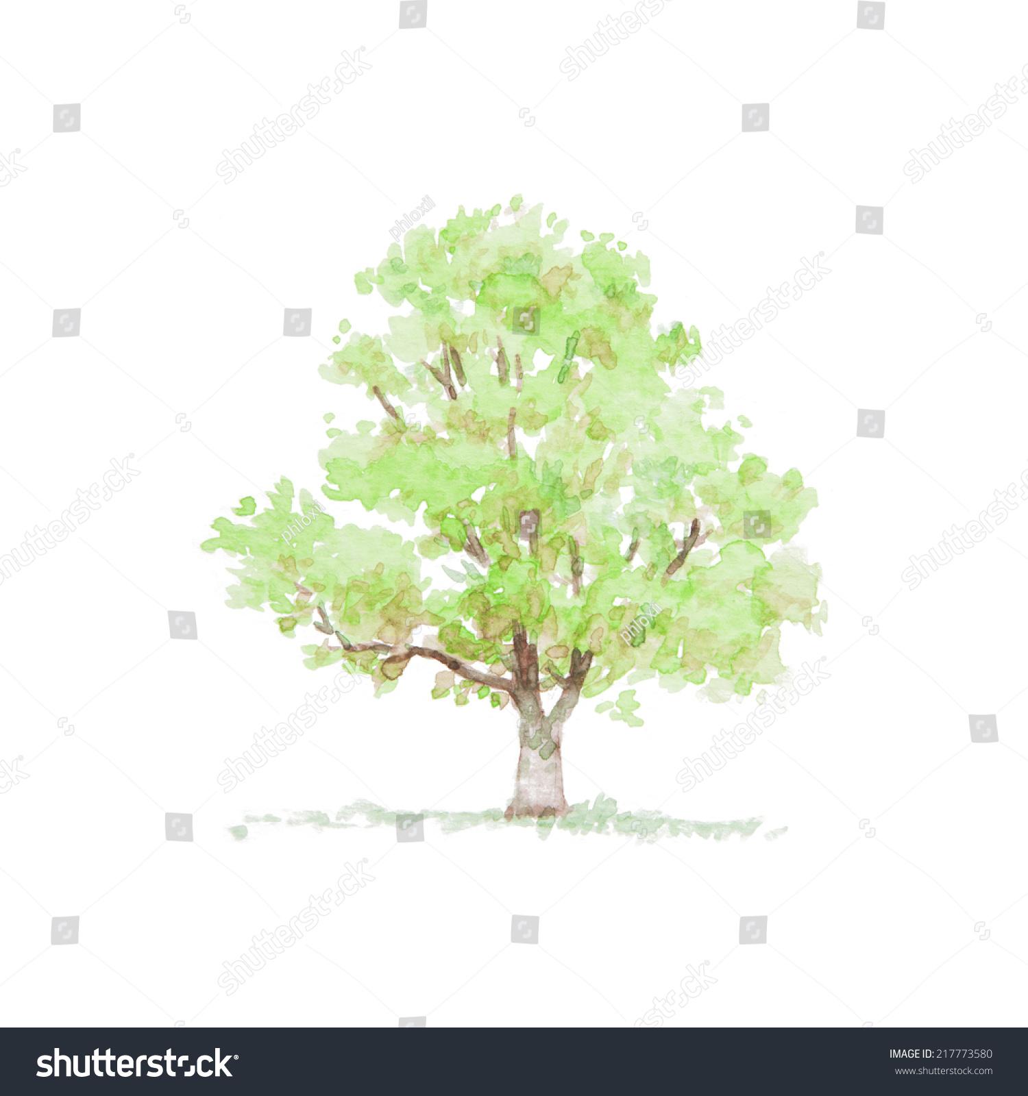 树水彩画-背景/素材,公园/户外-海洛创意(hellorf)--.