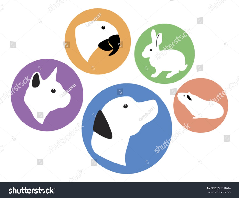 微信头像动物可爱兔子