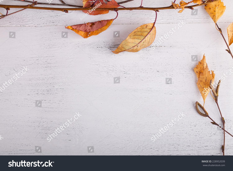秋叶在木头上-背景/素材,自然-海洛创意(hellorf)--.图片
