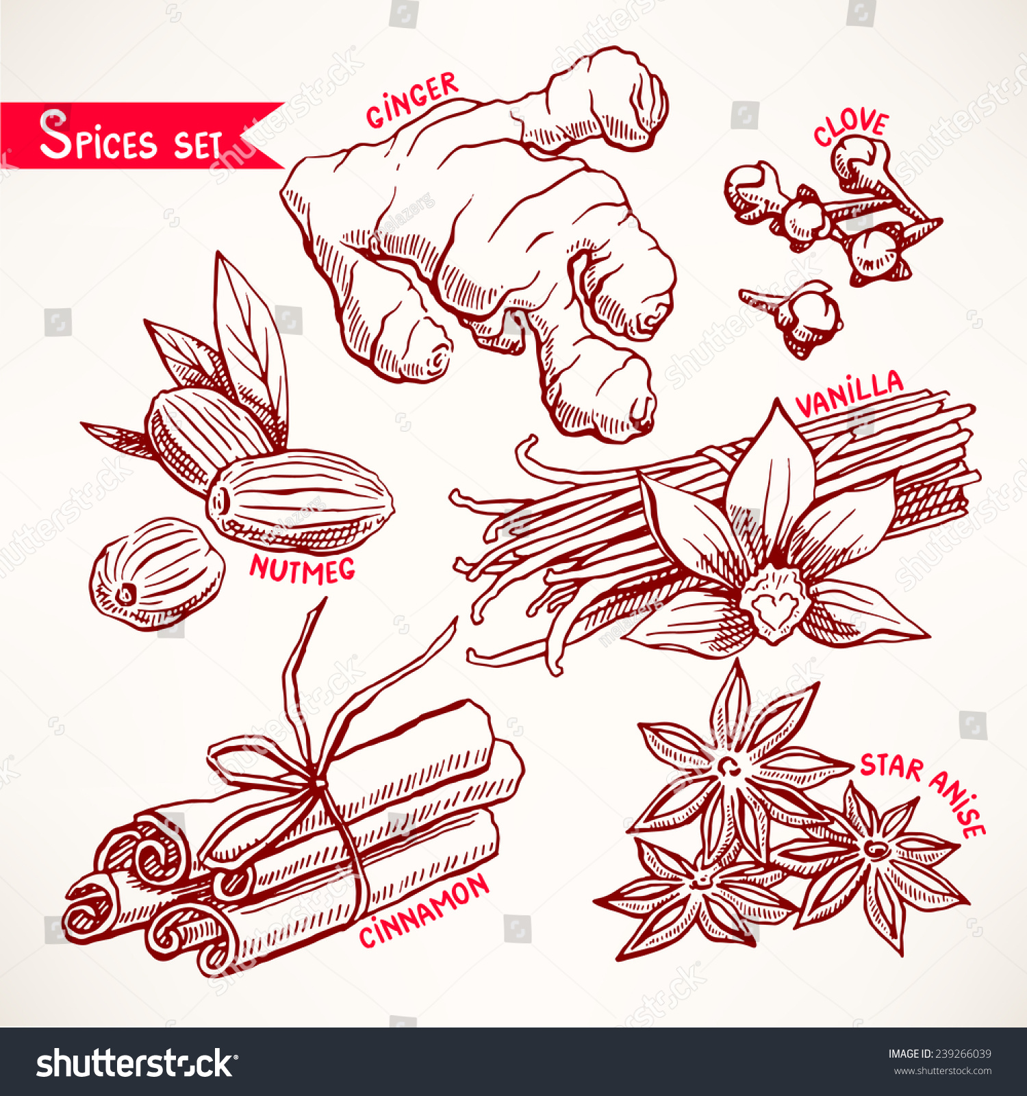 手绘插图-食品及饮料