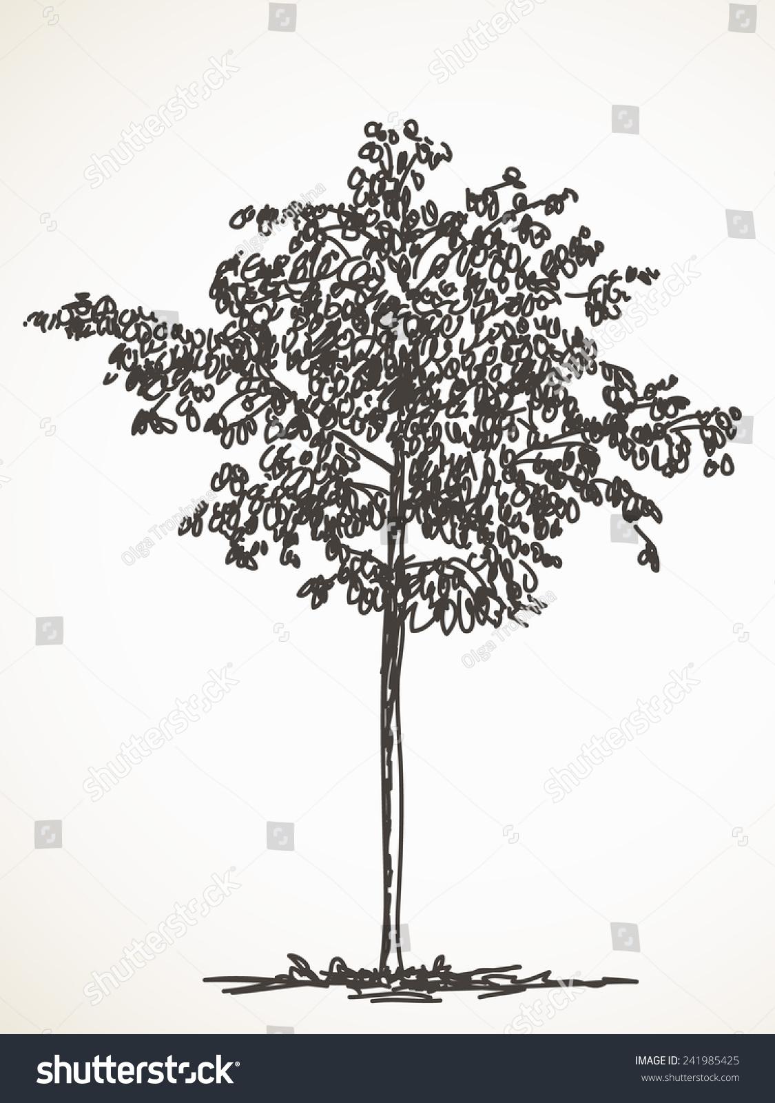 素描的小树,手绘矢量插图-物体,自然-海洛创意()-中国