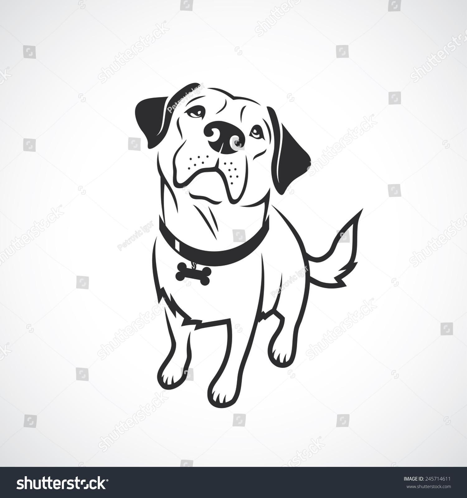 茶杯犬画画图片
