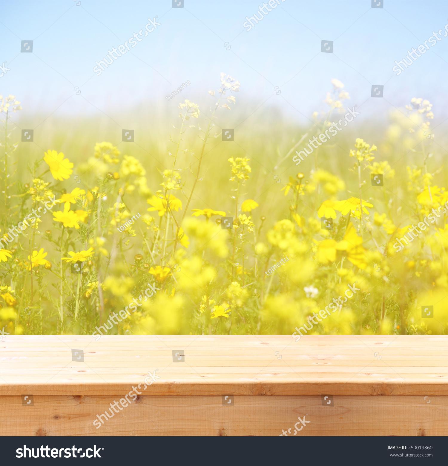 双曝光的花田在夏季景观前的木板台-背景/素材,自然