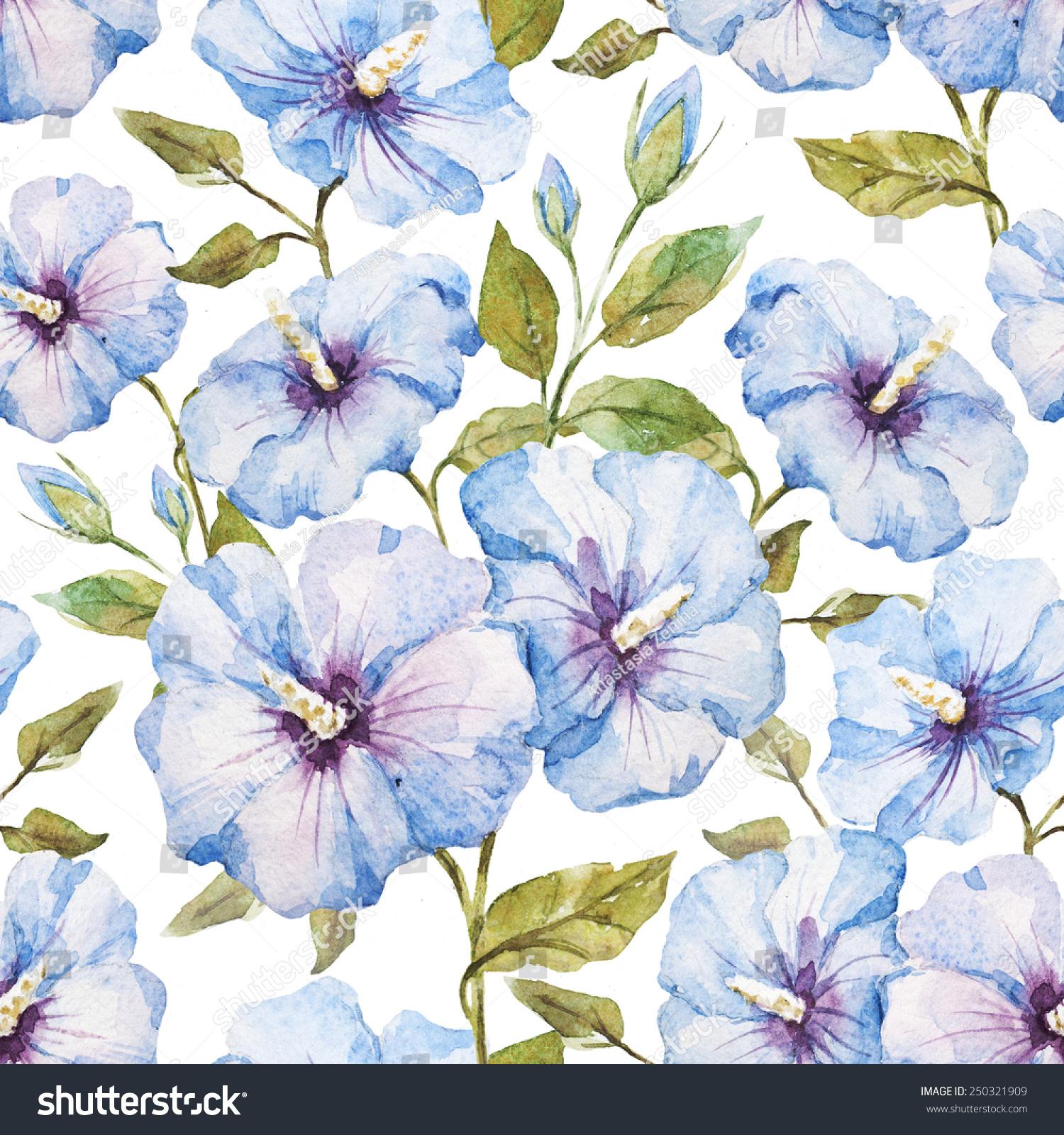 木槿花,外来的水彩画,图案-背景/素材,自然-海洛创意