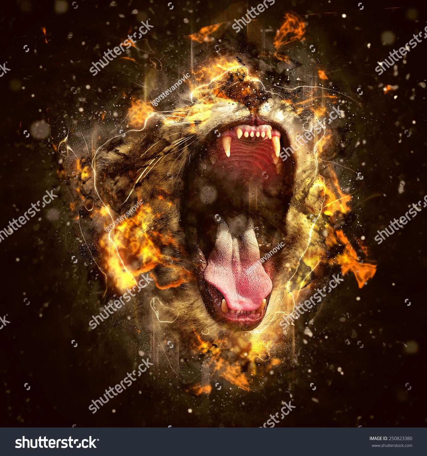 狮子,百兽之王,世界上最危险的动物.-动物/野生生物