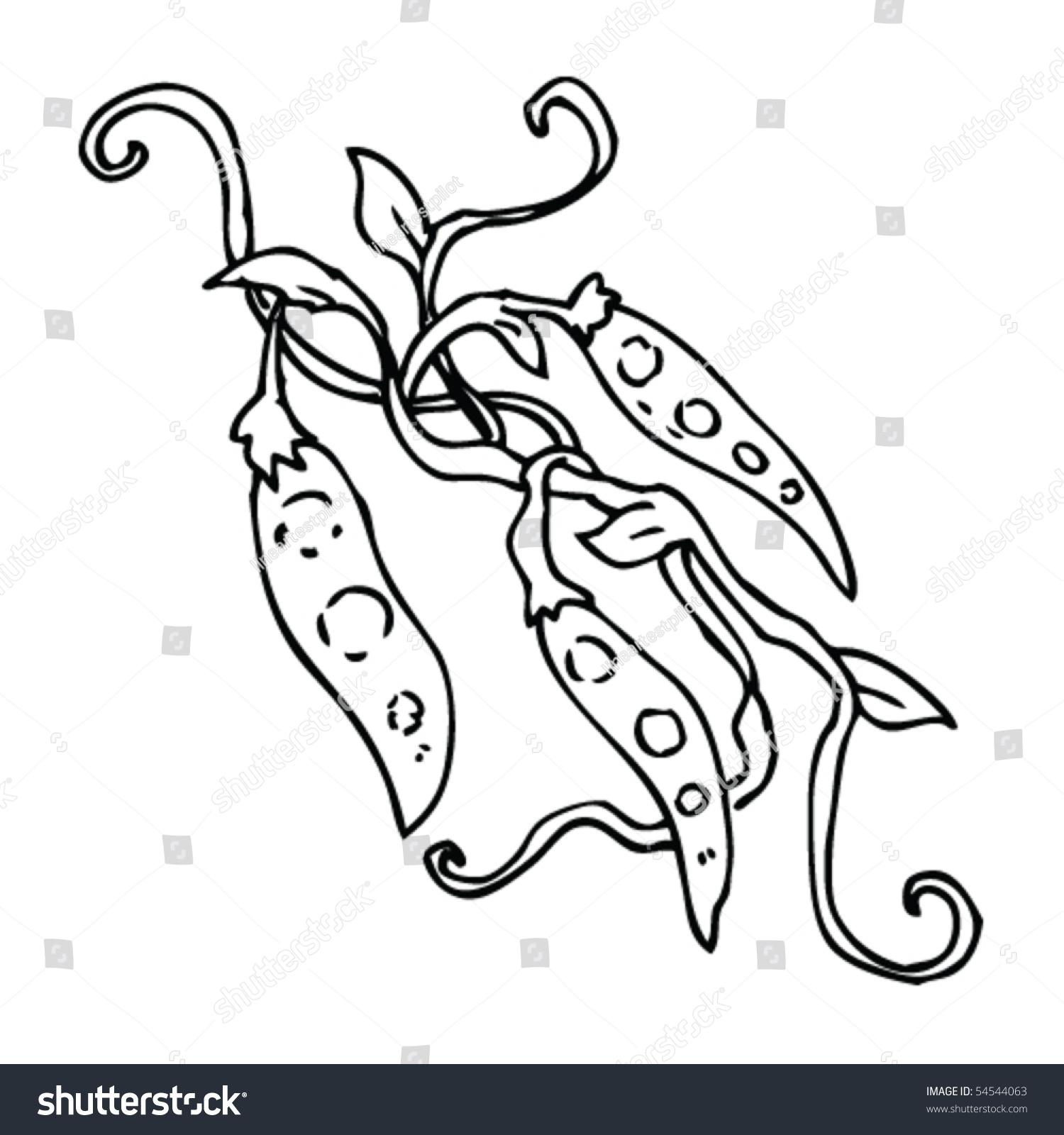蚕豆画-食品及饮料,插图/剪贴图-海洛创意(hellorf)