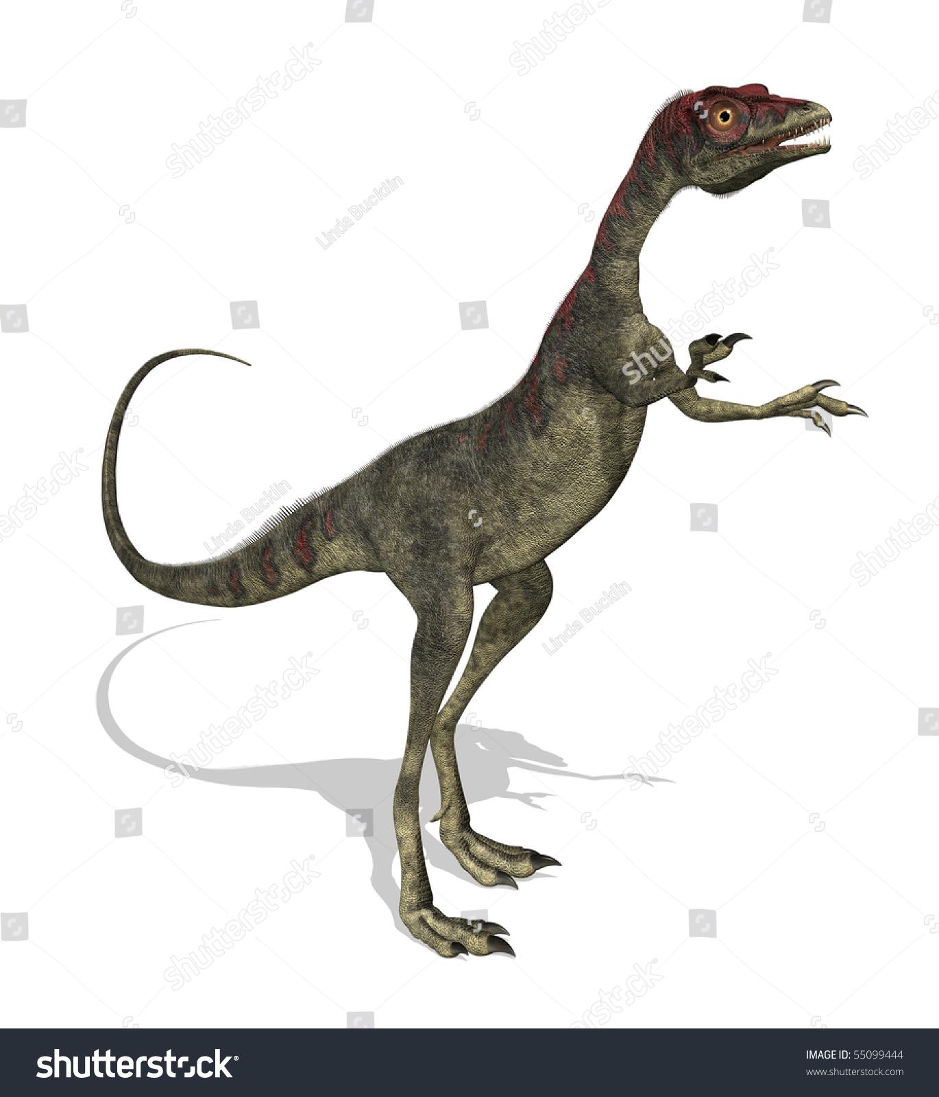 报纸恐龙制作步骤