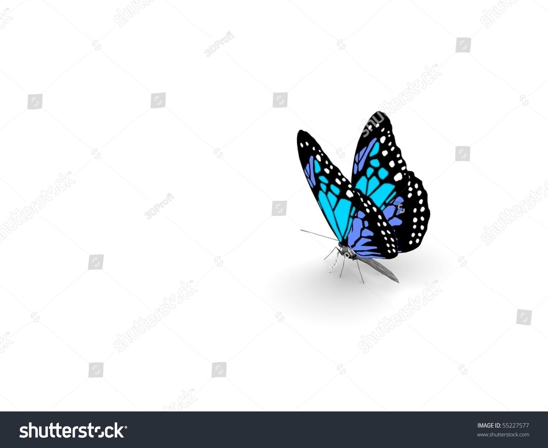 微信头像风景蝴蝶