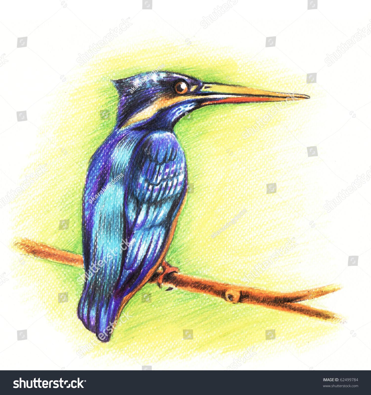 翠鸟鸟蜡笔手绘-艺术,动物/野生生物-海洛创意()-中国