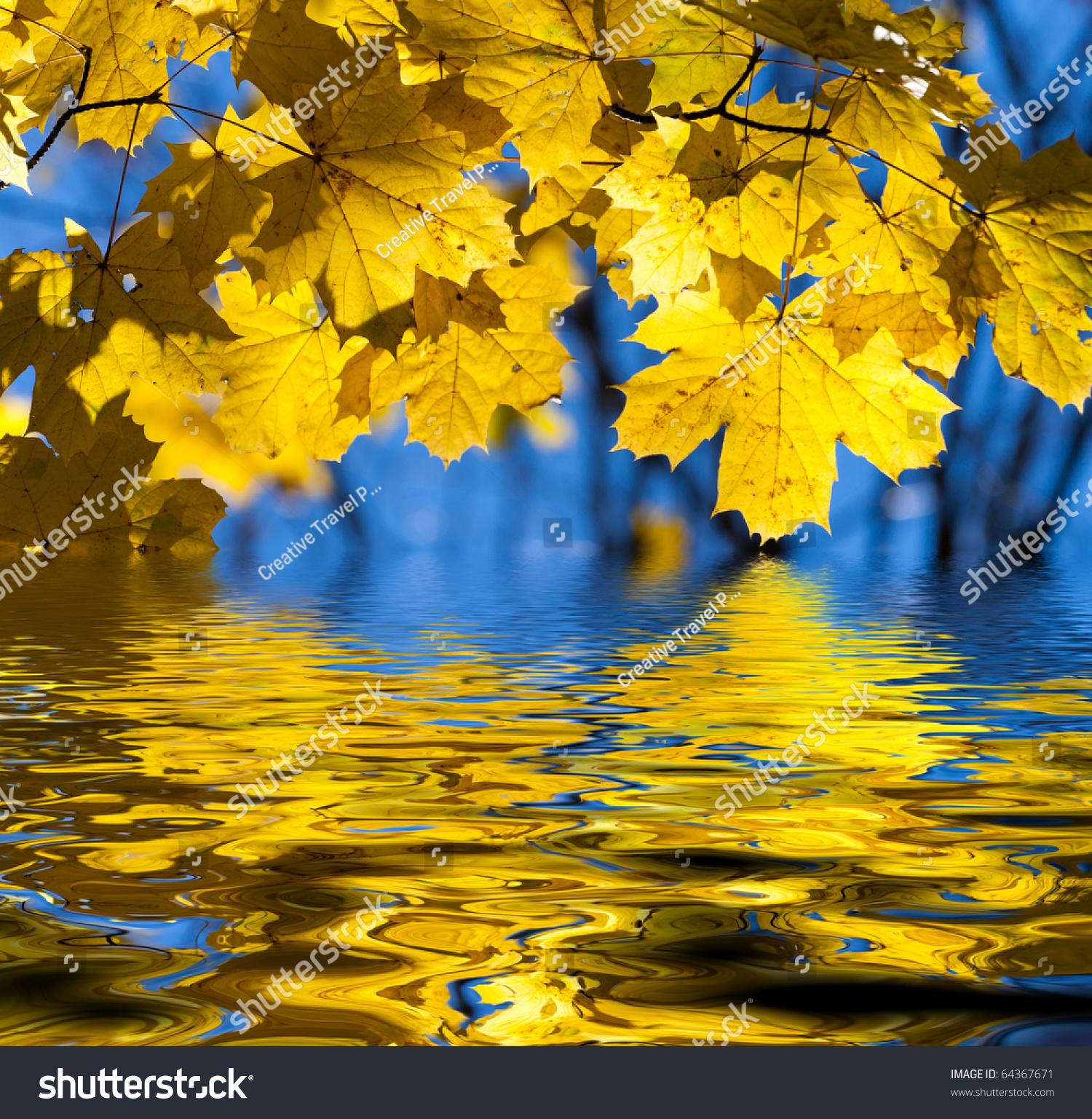 树叶子的折法图解
