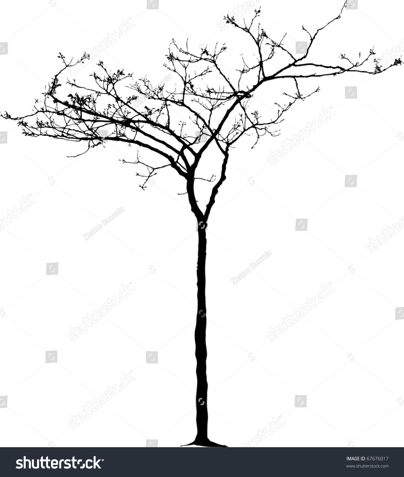 矢量图的小裸冬天的树
