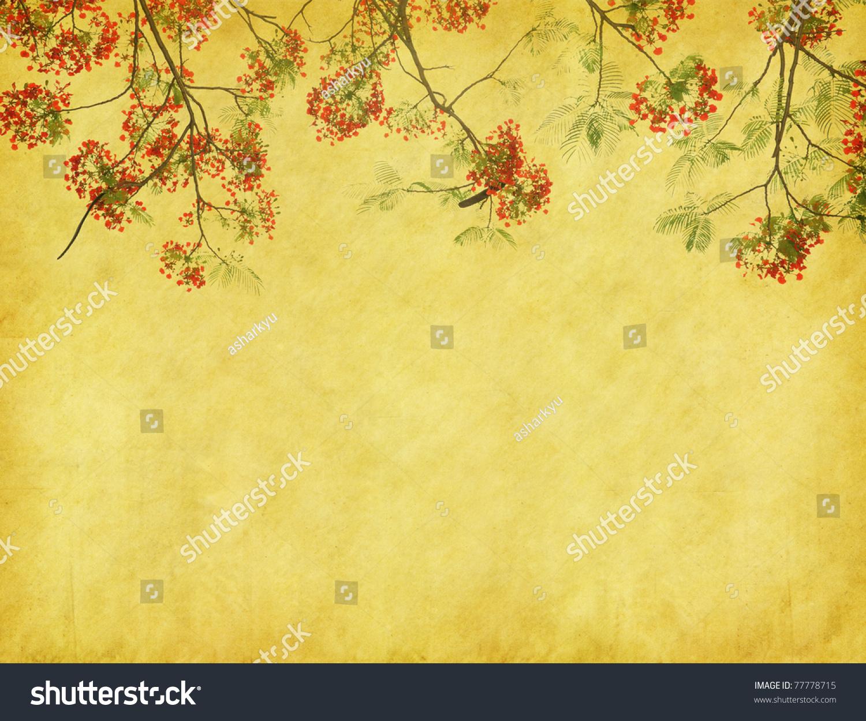 孔雀花与旧仿古复古纸背景树-背景/素材,抽象-海洛()