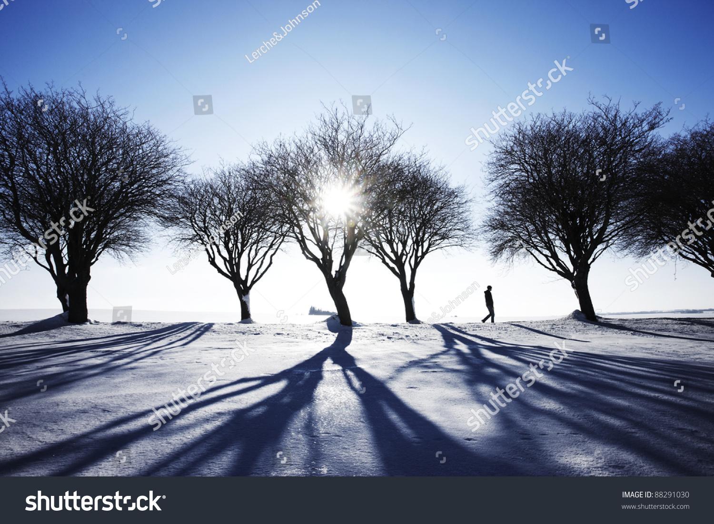 人走在雪在冬天的风景